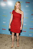 Лора Линни, фото 7. Laura Linney at the Showtime with The Cinema Society screening of 'The Big C', photo 7