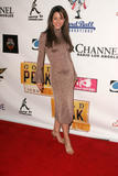 Emmanuelle Vaugier x 8 -- New Years Eve Party --